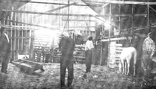 From left to right, the lynching of killer-for-hire, Jim Miller, and 3 others in Ada, Oklahoma, on April 19, 1909