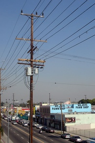 South Central Los Angeles, where much of the rioting took place[6]