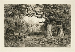An 1889 etching of the Forest of Arden, created by John Macpherson for a series by Frederick Gard Fleay