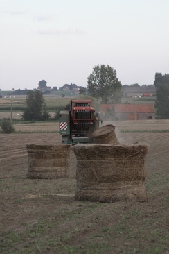 Mechanical baling of flax in Belgium. On the left side, cut flax is waiting to be baled.