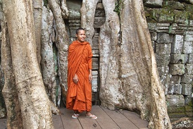 A Cambodian monk in his robes