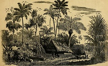1884 sketch of the bahamas