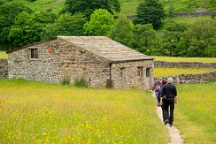 Tourists approaching a field barn in Muker