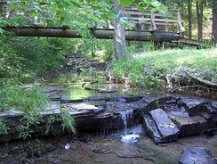 The Bee Lick Creek, of the Jefferson Memorial Forest, was designated as a National Audubon Society wildlife refuge.