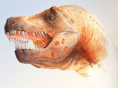 Restoration of a Tyrannosaurus with holes possibly caused by a Trichomonas-like parasite