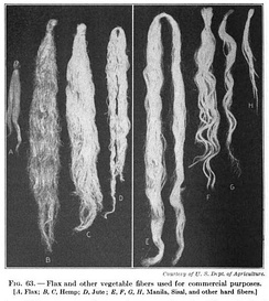 19th century knowledge weaving flax, hemp, jute, Manila hemp, sisal and vegetable fibers