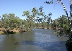 A branch of the Murray River, near Howlong, New South Wales.