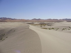 The Winnemucca Sand Dunes, north of Winnemucca
