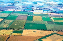 Aerial view of mixed crops near Coolamon
