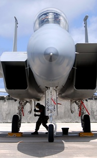 An F-15 with its two intake ramps in different positions