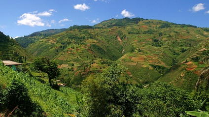 Land in Haiti is extremely variable, and frequently appears as a patchwork of different land-uses, including agriculture, agroforestry, forests, savanna, and barren lands.
