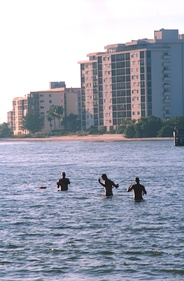 Fishermen wading in Fort Myers Beach.