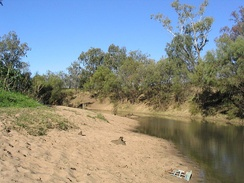 A sloping sandy point bar (close side) and the vegetation-stabilized cut bank (far side) on the Namoi River, New South Wales, Australia. These two constitute the banks of the river.