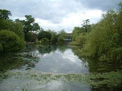 The pond at Priory Gardens is the source of the River Cray.