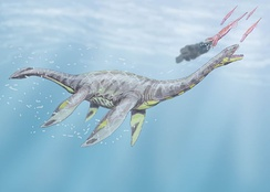 Seeleyosaurus with a tail fin