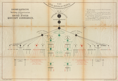 Organizational chart of the U.S. Sanitary Commission by John Y. Culyer, 1864