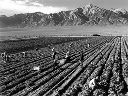Farm workers on a field near Mount Williamson. This photograph is by Ansel Adams.
