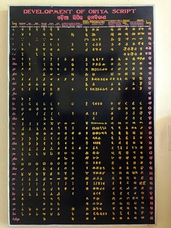 A detailed chart depicting evolution of the Odia script as displayed in a museum at Ratnagiri, Odisha