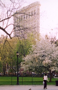 The Flatiron Building seen from Madison Square Park (April 2003)
