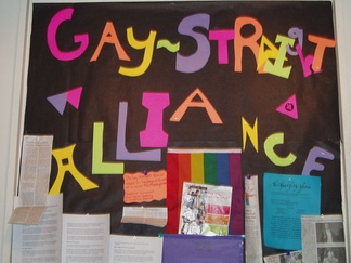 Some schools have gay–straight alliances or similar groups to counter homophobia and bullying and provide support for LGBT students in school.