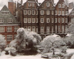 Houses in Collingham Gardens, Earl's Court