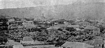 Pohukaina with the Royal Tomb to the left, Hale Aliʻi directly behind with the two story home of Kana'ina and Kekauluohi to the far right, where Lunalilo was born
