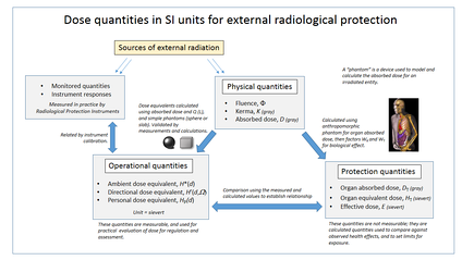 External radiation dose quantities used in radiological protection