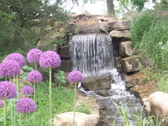 Waterfall and Flowers at the Overland Park Arboretum and Botanical Gardens.