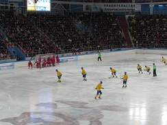A corner during the final of the 2015 Bandy World Championship