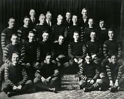 The Chicago Cardinals in 1920.