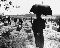 Victims of the Huế Massacre