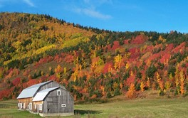 Autumn landscape of Haute-Gaspésie