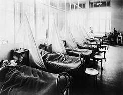 American Expeditionary Force victims of the Spanish flu at U.S. Army Camp Hospital no. 45 in Aix-les-Bains, France, in 1918