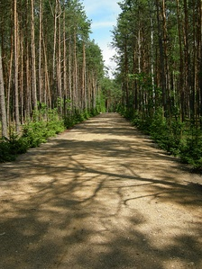 "Sobibor ""Road to Heaven"" in 2007"