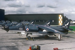 Royal Navy Fleet Air Arm Sea Harrier FRS1. The gloss paint scheme was altered to a duller one en route south.