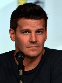 David Boreanaz portrays Seeley Booth