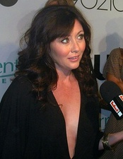 Shannen Doherty guest starred as her old Beverly Hills, 90210 character Brenda Walsh during the first season.