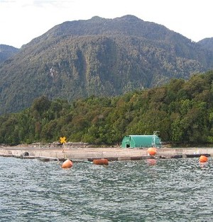 Aquaculture installations in southern Chile