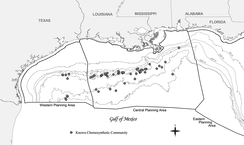 Chemosynthetic communities in the northern part of Gulf of Mexico around cold seeps known in 2006 include more than 50 communities