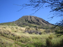 Koko Crater is a tuff cone that is part of the Honolulu Volcanic Series.