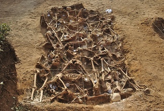 Twenty-six republicans executed by fascists who belonged to Franco's Nationalists at the beginning of the Spanish Civil War, between August and September 1936. This mass grave was placed at the small town named Estépar, in Burgos, northern Spain. The excavation occurred in July–August 2014.