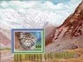 Таджикистан (почтовый блок, 1996)