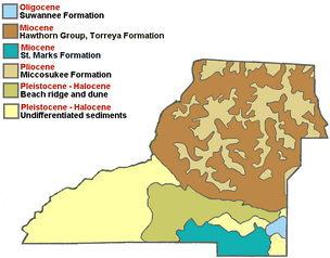 Geological make-up of Leon County.