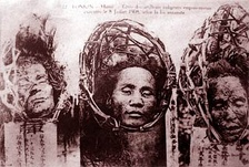 Heads of executed plotters displayed in public