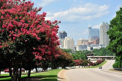 The Raleigh skyline with crepe myrtle trees in bloom 2017