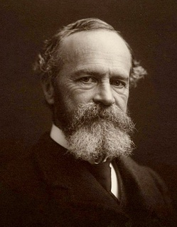 William James wrote The Varieties of Religious Experience.