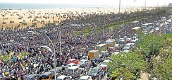 More than 2 million of students protested in Marina beach, Chennai, Tamil Nadu, India for the ban on Jallikatu.