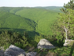 Papuk, the second highest mountain in Slavonia