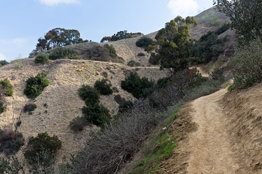 Puente Hills in Hellman Wilderness Park