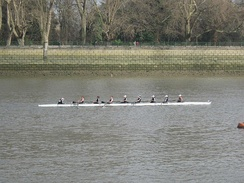 OUWBC competing at Women's Eights Head of the River on the Tideway, March 2012